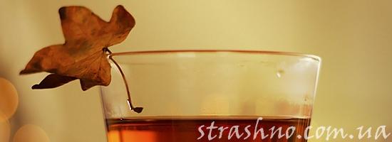 осень лист чай