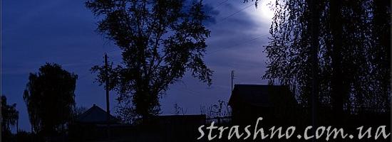 деревенская ночь луна