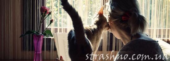 кошка женщина нежность