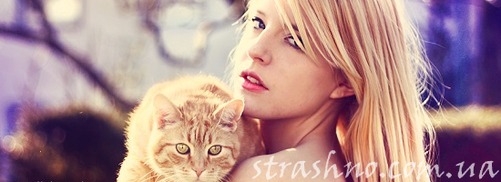 блондинка рыжий кот