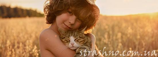 мальчик поле кошка