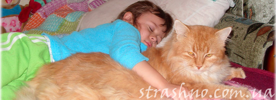 история про кота и ребенка