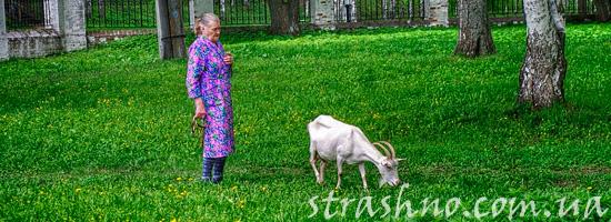 мистическая сельская история