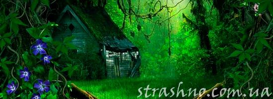 мистика в лесу