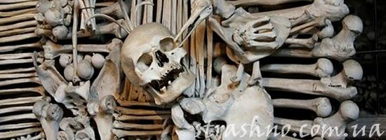 мистическая история о ритуале на костях