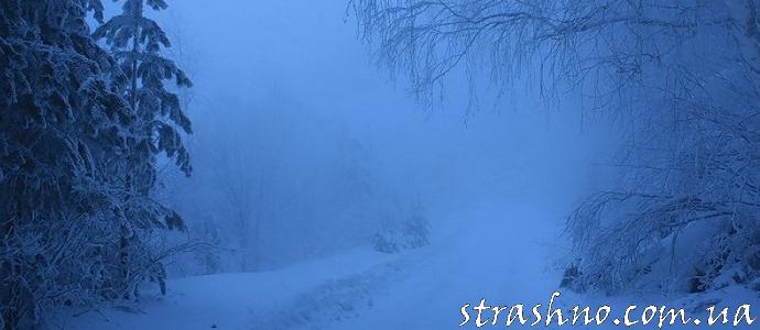 В ночном тумане