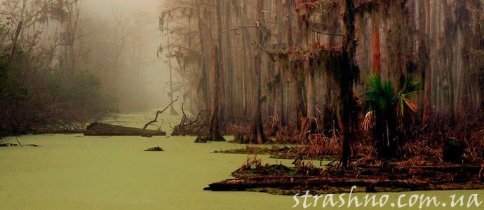 болото с призраками