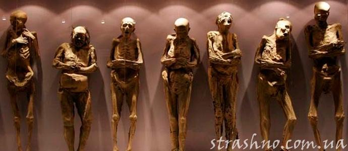мумии монахов