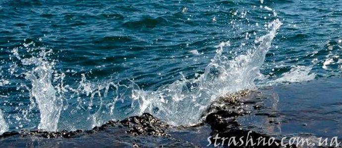 мистическая история об обитателях моря