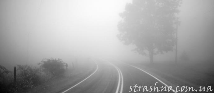 мистическая история о происшествии на туманной дороге
