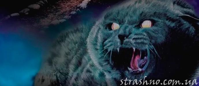 картинка из фильма ужасов Кладбище домашних животных