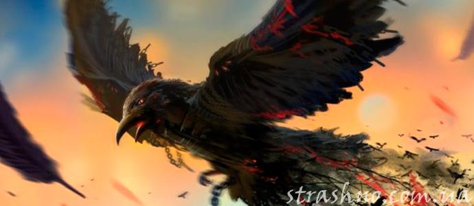 рисунок ворона из фильма ужасов