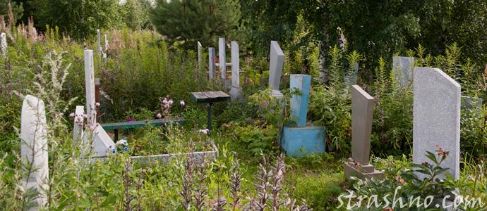 мистическая история об увиденном на кладбище