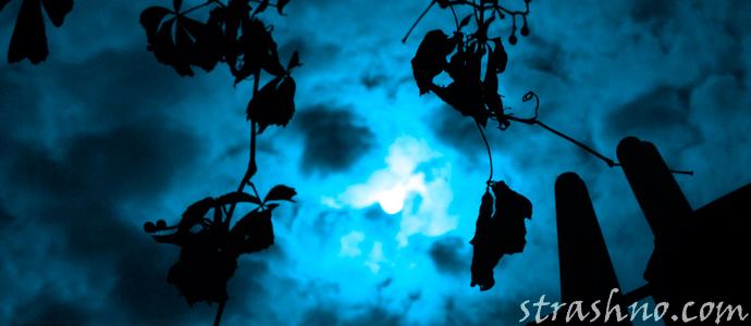 мистическая история об уходе грешной души