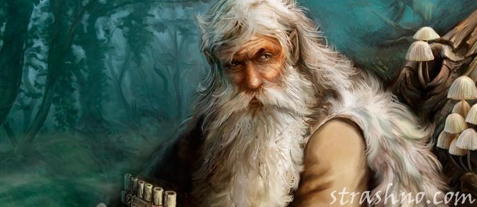 мистическая история о лешем