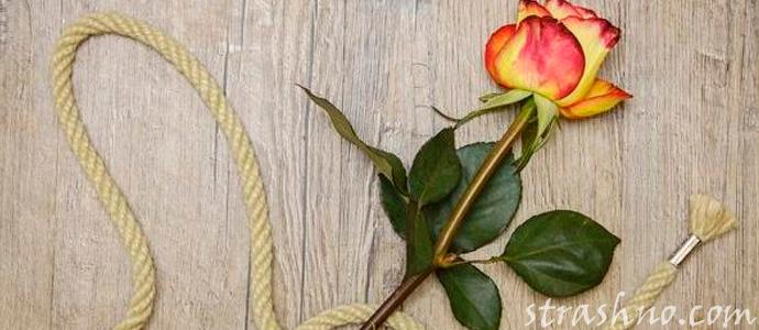 мистическая история о любовном привороте и его последствиях