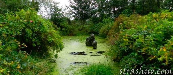 Мистическая история о хозяине болота