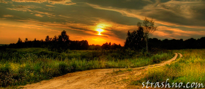 ночная дорога в поле