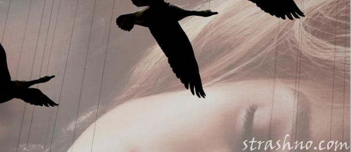 история об мистических снах