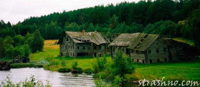 история о деревне на болотах