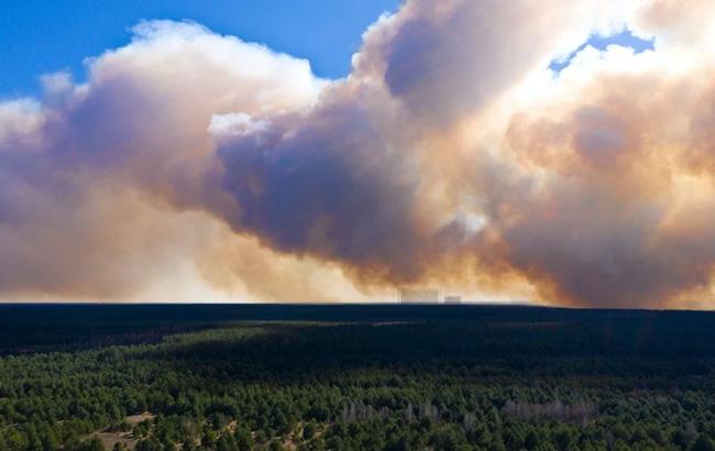 пожар в чернобыльском лесу
