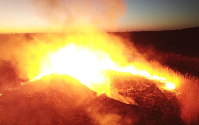страшный пожар в апреле 2020 г возле радиационной зоны отчуждения