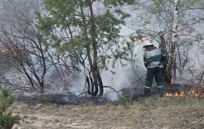 украинский пожарник борется с огнем