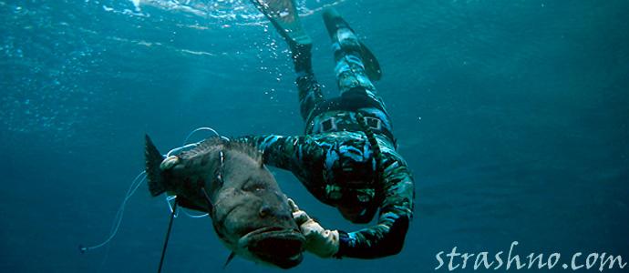 история о подводной рыбалке и встречей с русалкой