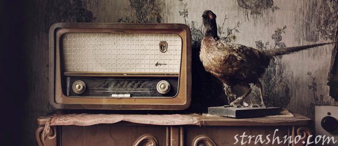 мистическая передача по радиоприемнику