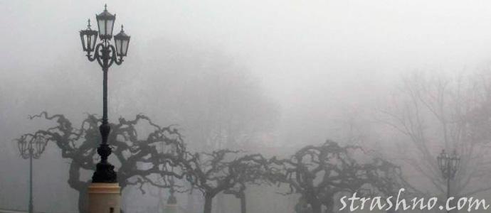 мистика в туманном городе