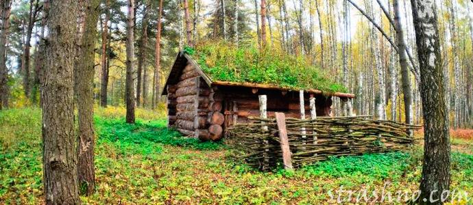 изба в лесу