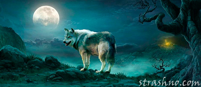 история о страшном волке-оборотне