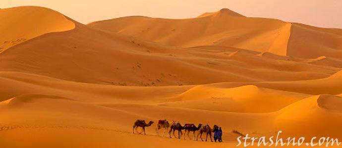 аномальная зона в песчаной пустыне Большой Западный Эрг