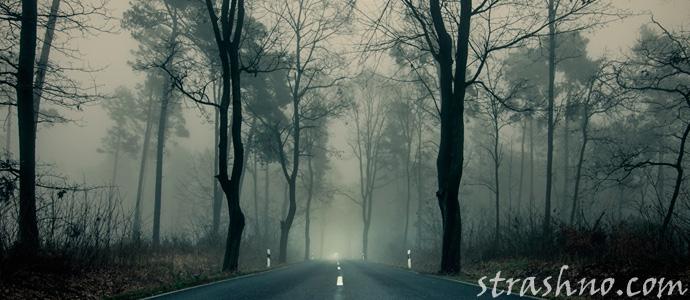 мистика на ночной дороге