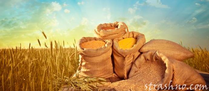 колдовство на мешки с зерном