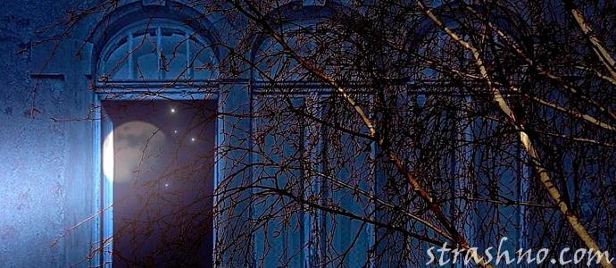 ночной стук в окно