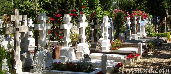 мистика на старом кладбище