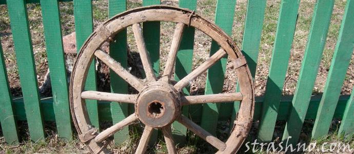 ведьмино колесо